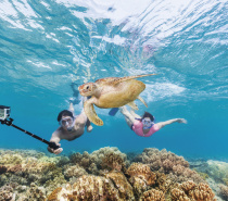 2 full day Moore Reef Daily Experiences with all standard inclusions