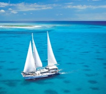 Set sail aboard the beautiful 32 metre sailing catamaran, Ocean Spirit, to experience Michaelmas Cay's unique reef environment