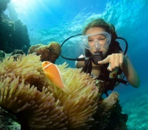 Cairns' warm waters offer excellent conditions to enjoy your diving experience.