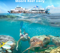 Great Barrier Reef snorkelling is great for swimmers of all abilities