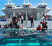 Cairns' warm waters offer excellent conditions to enjoy your diving experience