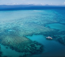 The Great Barrier Reef is made up of over 2,900 reefs. This includes 760 fringing reefs and 300 coral cays.