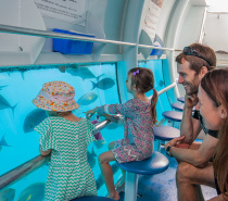 the semi-submersible Great Barrier Reef tour is included in your Moore Reef full day tour