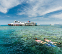 You won't find a better value outer reef adventure with this many activities and inclusions packed into one day.