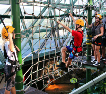 Cairns Rope Course