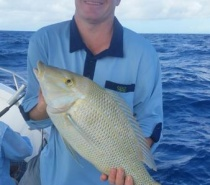 Reef fishing with Fish tales` Charters from Cairns.