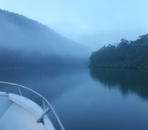 Early morning over the water on the Mulgrave & Russell Rivers