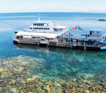 Sunlover Cruise | MOORE REEF DAILY