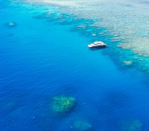 Dreamtime Dive & Snorkel visits the Great Barrier Reef