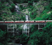 The scenic rail journey takes 1.5 hours through to Cairns Railway Station.