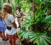 How amazing is this up close and personal board walk through the Daintree Rainforest