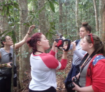 Daintree Rainforest Research Station Service Project