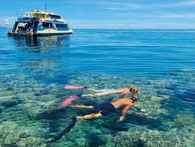 Cairns Tourism Town Find Amp Book Authentic Experiences