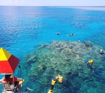 Our friendly snorkelling safety officers can assist you with your snorkelling gear and give you a few tips so that you can fully enjoy your experience.