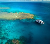 we visit some of the best dive and snorkel locations on the Outer Great Barrier Reef at  Agincourt, Opal and St Crispin's Reefs.