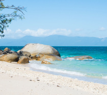 Spend the day snorkelling the fringing coral reefs from the beach at Fitzroy Island