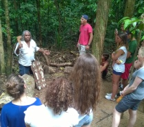 Aboriginal Guide on an Educational Rainforest Walk