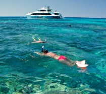 This is an active day all about being in the water for your dive or snorkel adventure of a lifetime!