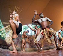 Pamigirri Dancers - Rainforest Station