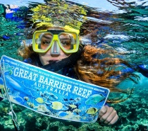 Ride on EVOLUTION to the Outer Great Barrier Reef for snorkelling with all gear and tuition included.