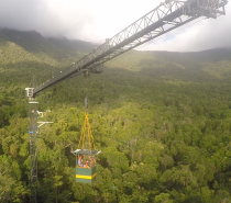 Students Access the Rainforest via JCU's Canopy Crane