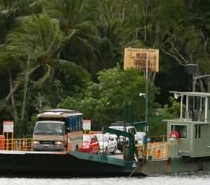 Daintree River Cable Ferry Crossing