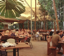 Cape Tribulation Beach House Restaurant