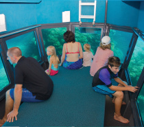 Outer Reef: Inside the semi-submersible, coral viewing tour