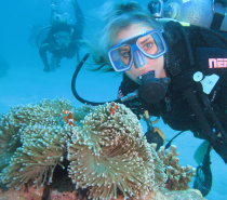 Scuba diving at the Outer Reef