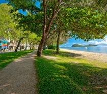 Palm Cove village
