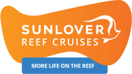 Sunlover Moore Reef Cruise