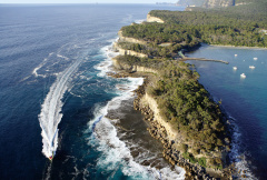 Bruny Island Cruise & Day Tours