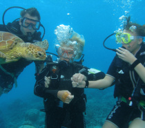 Great Barrier Reef Marine Encounters