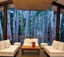Lounge setting in the forest with the Coral Sea in the background