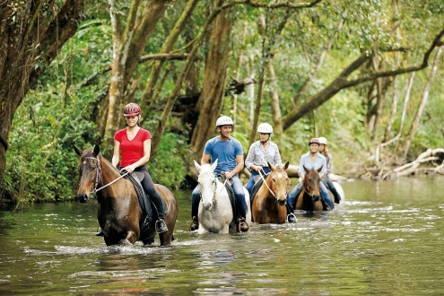 Half Day Horse Riding Tour