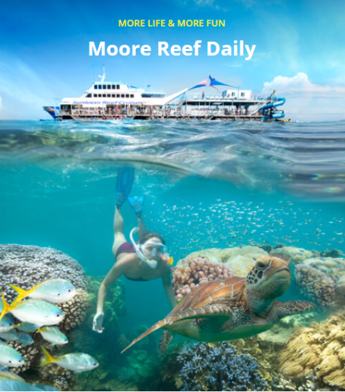Sunlover Moore Reef Experience