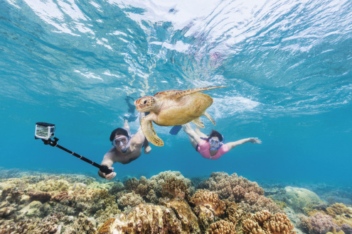 What to Bring on the Sunlover Reef Tour