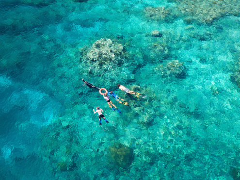 Snorkelling with ReefQuest
