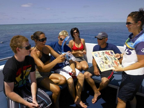 Tusa Dive Cairns Day Trip Itinerary