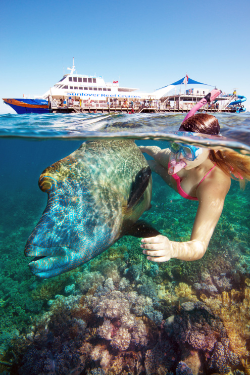 Great Barrier Reef Day Trip Includes: