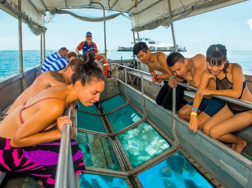 Glass Bottom Boat Experience