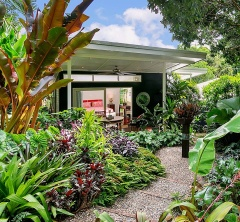 The recent Wet Season in Cairns has given the garden at TABU B&B a nice lift.