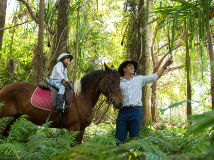 Half Day Horse Riding Tours