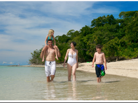 Special Offers: Palm Cove Family Holiday