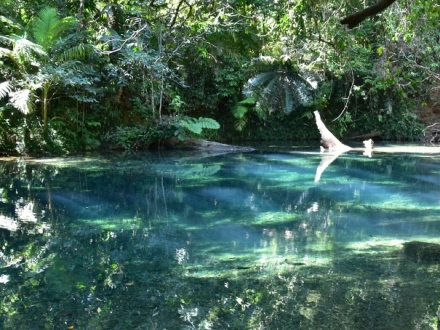 Cape Tribulation & Bloomfield Falls