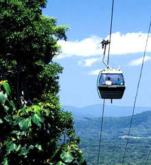 Green Island & Skyrail Rainforest Cableway Adventure