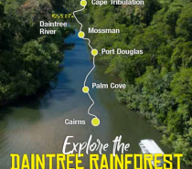Experience the rainforest intimately on one of our guided elevated National Park Boardwalks