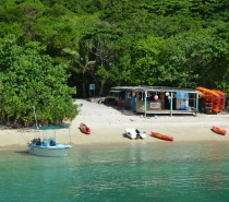 The Beach Shack at Fitzroy Island