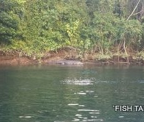 FISH TALES CHARTERS RUSSELL RIVER.JPG