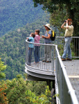 Mamu Rainforest Canopy Walkway